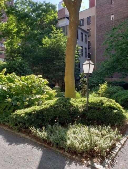 Studio, Tudor City Rental in NYC for $1,795 - Photo 2
