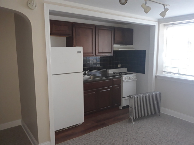 Studio, Rogers Park Rental in Chicago, IL for $795 - Photo 1