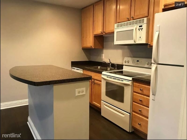 1 Bedroom, Andersonville Rental in Chicago, IL for $1,250 - Photo 2
