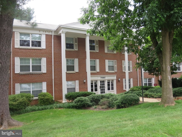 2 Bedrooms, Margarity Rental in Washington, DC for $2,000 - Photo 1