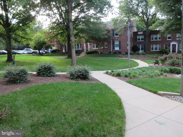 2 Bedrooms, Colonial Village Rental in Washington, DC for $2,300 - Photo 2