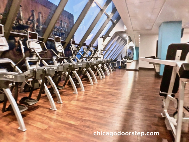 1 Bedroom, Gold Coast Rental in Chicago, IL for $2,850 - Photo 1