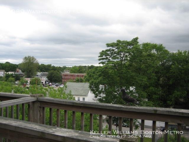 2 Bedrooms, Washington Park Rental in Boston, MA for $2,075 - Photo 2