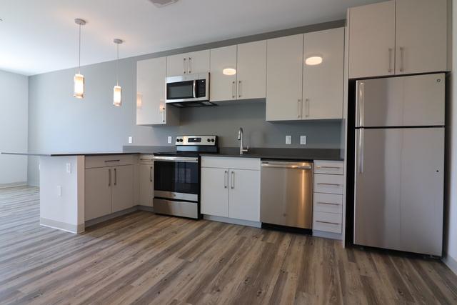 1 Bedroom, St. Elizabeth's Rental in Boston, MA for $2,890 - Photo 1