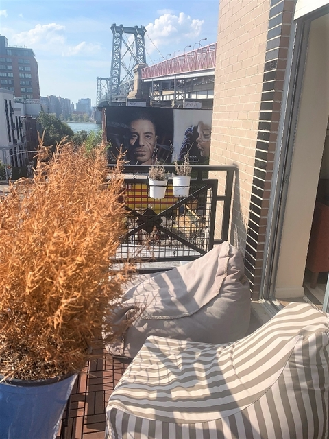 1 Bedroom, Williamsburg Rental in NYC for $2,380 - Photo 2