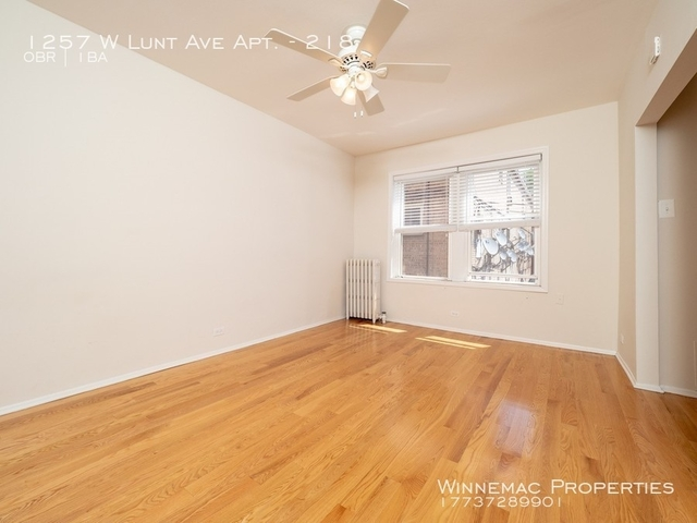 Studio, Rogers Park Rental in Chicago, IL for $885 - Photo 2