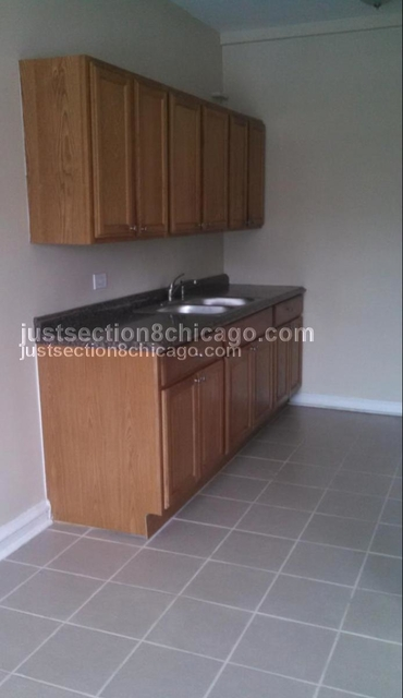 2 Bedrooms, South Shore Rental in Chicago, IL for $1,150 - Photo 1