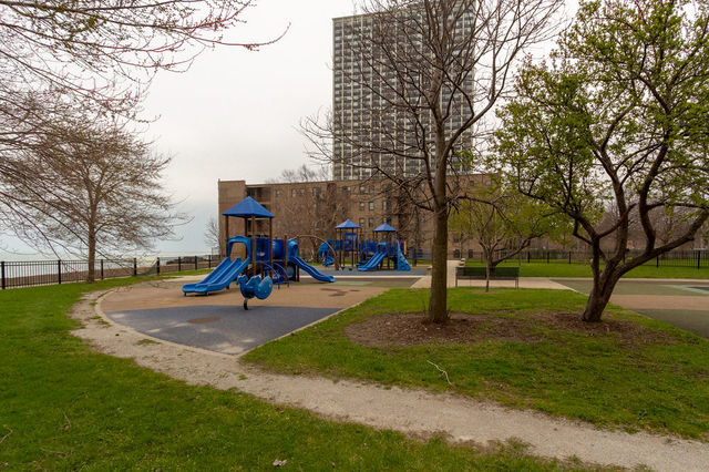 1 Bedroom, South Shore Rental in Chicago, IL for $1,100 - Photo 2