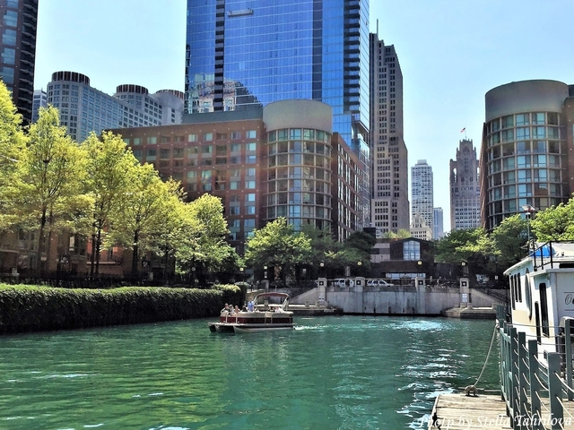 1 Bedroom, Streeterville Rental in Chicago, IL for $1,895 - Photo 1