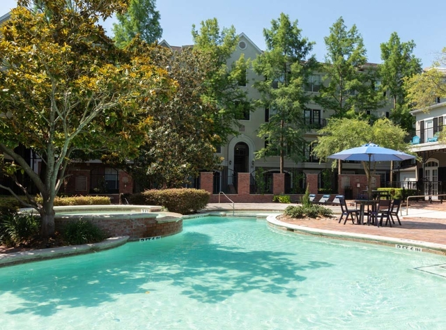 1 Bedroom, Memorial Heights Rental in Houston for $1,224 - Photo 1