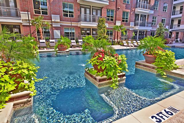 2 Bedrooms, Washington Avenue - Memorial Park Rental in Houston for $2,064 - Photo 1