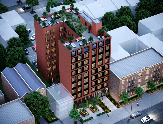 3 Bedrooms, Weeksville Rental in NYC for $2,900 - Photo 1