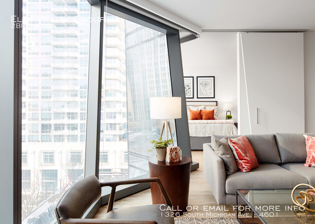 2 Bedrooms, South Loop Rental in Chicago, IL for $4,690 - Photo 2