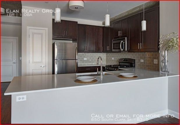 1 Bedroom, South Loop Rental in Chicago, IL for $2,521 - Photo 1