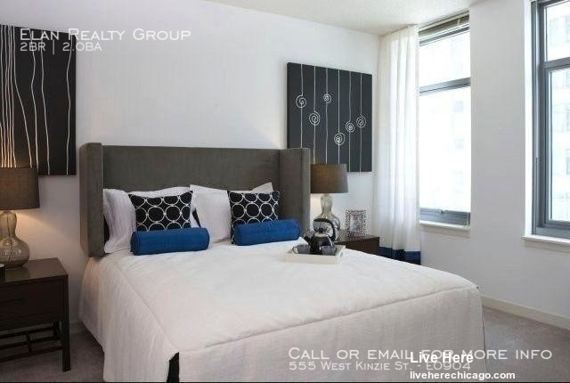 2 Bedrooms, Fulton River District Rental in Chicago, IL for $3,105 - Photo 1