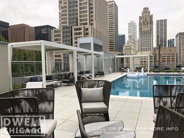 1 Bedroom, Streeterville Rental in Chicago, IL for $2,496 - Photo 2