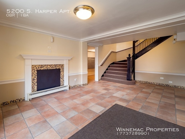 Studio, Hyde Park Rental in Chicago, IL for $895 - Photo 2