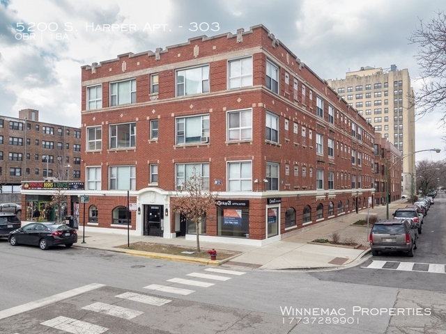 Studio, Hyde Park Rental in Chicago, IL for $895 - Photo 1