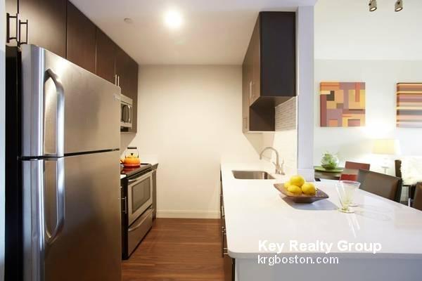 1 Bedroom, Harrison Lenox Rental in Boston, MA for $3,700 - Photo 1