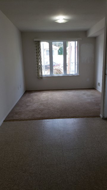 1 Bedroom, Great Kills Rental in NYC for $1,250 - Photo 2