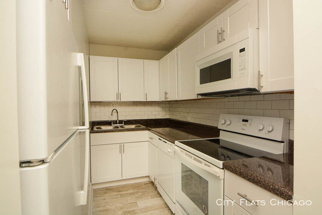 1 Bedroom, Wrightwood Rental in Chicago, IL for $1,649 - Photo 2