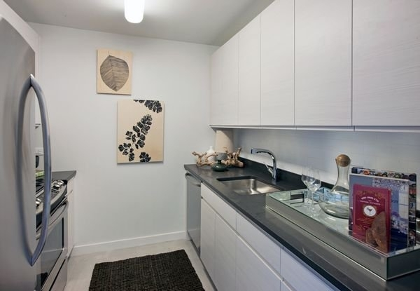 1 Bedroom, Hunters Point Rental in NYC for $3,495 - Photo 2
