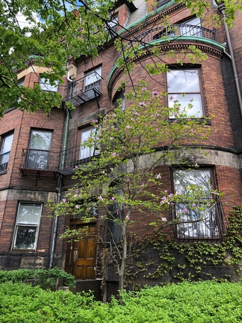 1 Bedroom, Fenway Rental in Boston, MA for $1,800 - Photo 1