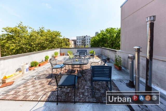 1 Bedroom, Prospect Lefferts Gardens Rental in NYC for $2,295 - Photo 1