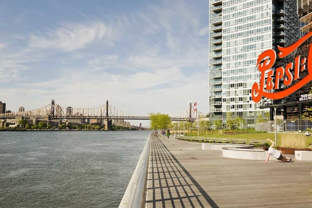 1 Bedroom, Hunters Point Rental in NYC for $3,142 - Photo 1
