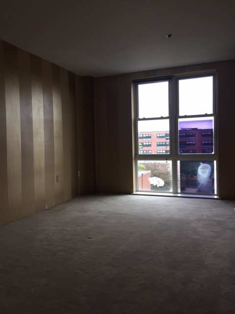1 Bedroom, Financial District Rental in Boston, MA for $1,900 - Photo 2