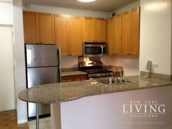 1 Bedroom, Civic Center Rental in NYC for $2,895 - Photo 1