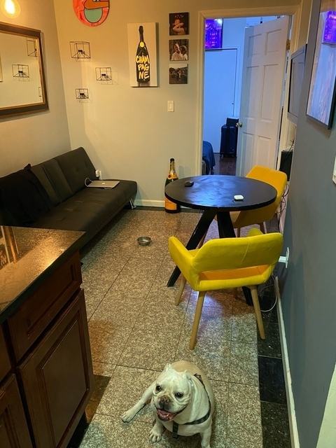 1 Bedroom, Chinatown Rental in NYC for $1,800 - Photo 1