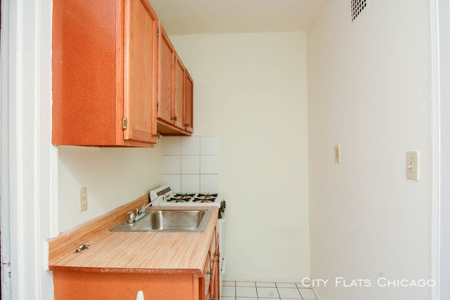 1 Bedroom, Andersonville Rental in Chicago, IL for $1,000 - Photo 2