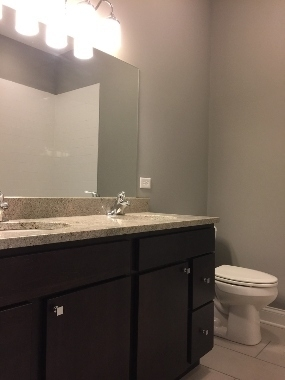 3 Bedrooms, Woodlawn Rental in Chicago, IL for $1,700 - Photo 2