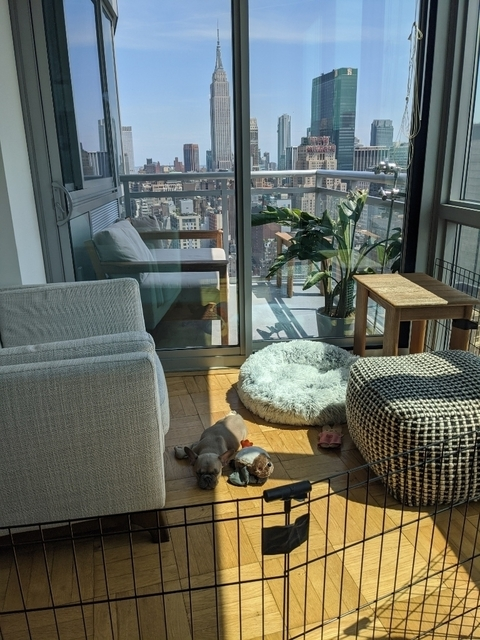 1 Bedroom, Hell's Kitchen Rental in NYC for $3,264 - Photo 2