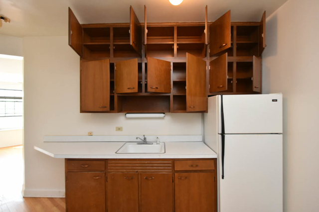 1 Bedroom, South Highland Rental in Chicago, IL for $1,750 - Photo 2
