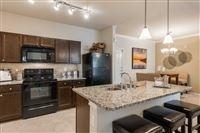 1 Bedroom, Washington Avenue - Memorial Park Rental in Houston for $1,245 - Photo 1