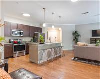 1 Bedroom, Chalfonte Condominiums Rental in Houston for $975 - Photo 1