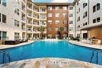 1 Bedroom, Meyerland Area Rental in Houston for $1,299 - Photo 1