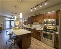 1 Bedroom, Midtown Rental in Houston for $1,425 - Photo 1