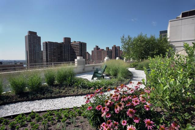 Studio, East Harlem Rental in NYC for $3,995 - Photo 2