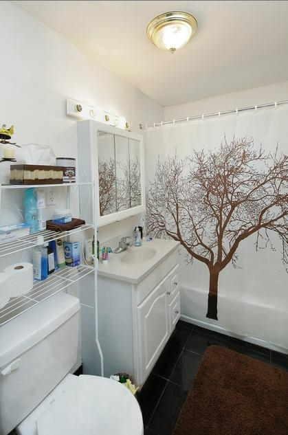 2 Bedrooms, Allston Rental in Boston, MA for $2,300 - Photo 2