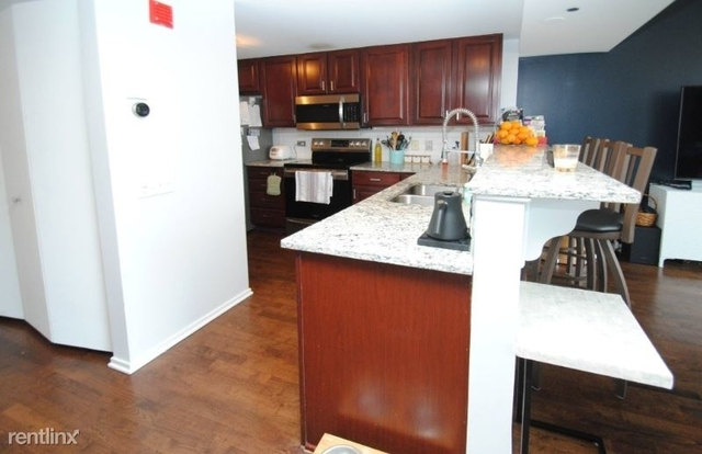 2 Bedrooms, Dearborn Park Rental in Chicago, IL for $3,150 - Photo 1