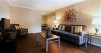 2 Bedrooms, Great Uptown Rental in Houston for $1,245 - Photo 1