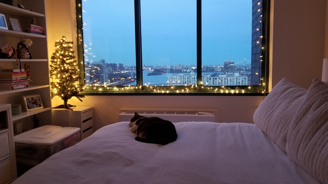 1 Bedroom, Roosevelt Island Rental in NYC for $2,220 - Photo 1