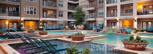 1 Bedroom, Northwest Dallas Rental in Dallas for $1,264 - Photo 1