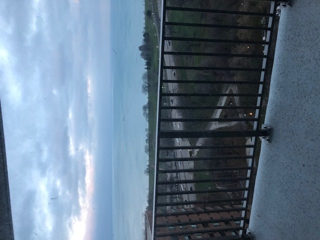 3 Bedrooms, Lake View East Rental in Chicago, IL for $5,200 - Photo 2