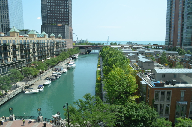 1 Bedroom, Streeterville Rental in Chicago, IL for $1,850 - Photo 2