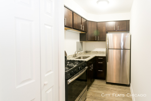 1 Bedroom, Edgewater Beach Rental in Chicago, IL for $1,250 - Photo 2