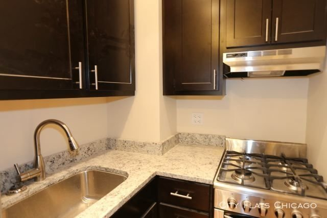 Studio, Lake View East Rental in Chicago, IL for $995 - Photo 2